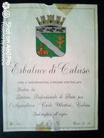 ERBALUCE DI CALUSO - CARLO UBERTINI, CALUSO (TORINO) - ETICHETTA - ÉTIQUETTE - Blancs