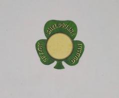 Cx13 CC32) IRELAND Hotel Shelbourne Dublin Etiquette Hotel Label Diam. 5,5x5,5cm - Etiketten Van Hotels