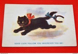 "FANTAISIES - HUMOUR -  "" Good Luck Follow You Wherever You Go !!! "" - "" La Chance Te Suivra Partout Où Tu Iras "" - Humor"