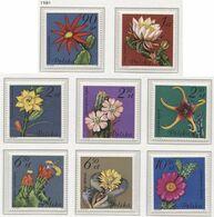 POLAND 1981 Mi 2786-93 Succulent Flowers - Cacti, Plants, Nature, Full Set MNH ** - Sukkulenten