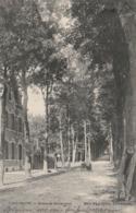 Libramont, Route De Séviscourt, 2 Scans - Libramont-Chevigny