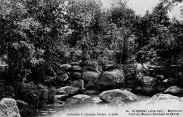 CPA     44   CLISSON---ENVIRONS PONT DU MOULIN-NEUF SUR LA SEVRE---1911 - Clisson