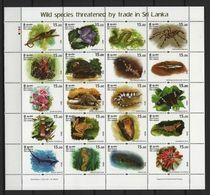 Sri Lanka (2020) - MS -  /  Butterflies - Orchids - Frogs - Vlinders - Birds - Reptiles - Fishes - Marine Fauna - Lizard - Farfalle