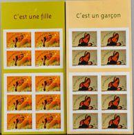 FR. 2004 - 2 Bandes-Carnets - N° BC40/BC41 - 20 Timbres De Naissances - Parf. Etat - Adhésifs (autocollants)
