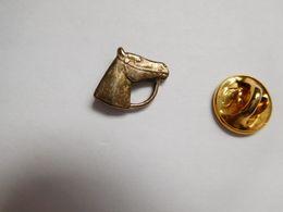 Beau Pin's Stylisé , Cheval , Horse - Dieren
