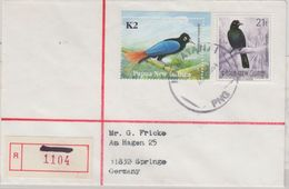 Papua New Guinea - Namatanai AUG 1994 Einschreibebrief Bird Of Paradise - Papua New Guinea