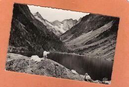 CPSM 14 X 9 * * CAUTERETS  * * Le Lac De Gaube - Cauterets