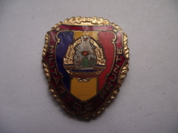 Romania - Army - Emblem - Leading Military Insignia Badge Abzeichen - See Verso - Militari