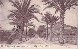 83, Hyères, L'Avenue Godillot - Hyeres