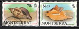 MONTSERRAT - 1988 - Sea  Shells:  True Tulip Shell, Flame Auger - USATI - Montserrat