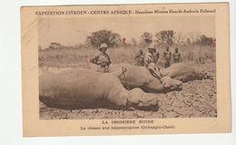 Expédition Citroën Centre Afrique/ Croisière Noire , Chasse Aux Hippopotames - Voitures De Tourisme