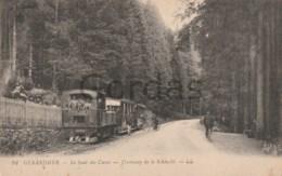 France - Gerardmer - Tramway De La Schlucht - Tramways