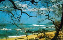 1 AK Costa Rica * Der Strand Von Tamarindo In Der Provinz Guanacaste * - Costa Rica