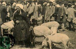 Josselin * Un Coin Du Champ De Foire * Marché Aux Cochons * Porcs * Coiffe Coiffes Bretagne Morbihan Bretonnes - Josselin