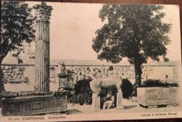 Cpa, Carthage, Antiquités, éd Lehnert Et Landrock, N° 272, Non écrite - Tunisia