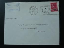 09 Ariège Tarascon Art Rupestre Rupestral Art 1973 - Flamme Sur Lettre Postmark On Cover - Préhistoire