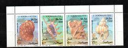 SOMALIA, 1993 - SERIE, SET - CONCHIGLIE- SHELLS, MNH** ADF. - Somalia (1960-...)