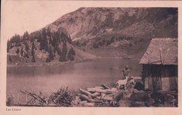 Lac Lioson VD, Chalet D'alpage, Berger Chèvre Et Cochon (147) - VD Waadt