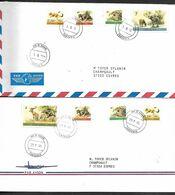 LE107  Deux Enveloppes De Tanzanie De 1998 à Destination De La France - Tansania (1964-...)