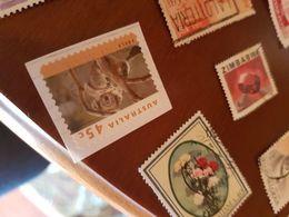 AUSTRALIA ANIMALI 1 VALORE - Stamps