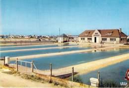 OSTREICULTURE Métier De La Mer - 14 - COURSEULLES Sur MER : Le Parc à Huitres Et Le Camping - CPSM  GF- Calvados - Pêche