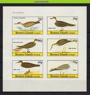 Nfz010b FAUNA VOGELS * IMPERF * FULMAR  PETREL SKUA BIRDS VÖGEL AVES OISEAUX SCOTLAND BERNERA ISLANDS 1982 PF/MNH - Fantasy Labels