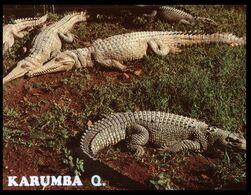 (I 11) Australia - NT - Kakadu NP (wiht Crocdile) With Stamp (W525A) - Kakadu