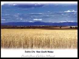 (I 11) Australia - NSW - Dubbo Cereal Plant (G656-20203)) - Dubbo