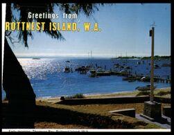 (I 11) Australia - WA - Rottnest Thompson Bay (W47) - Perth