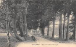 MEURTHE ET MOSELLE  54  BACCARAT - UN COIN DU PARC MUNICIPAL - Baccarat