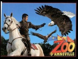 (I 13) Zoo D'Amneville -Horse - Bird Of Pray - Eagle - Aigle) - Oiseaux
