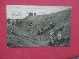Coal Pickers On Culm Pile Scranton  Pennsylvania   Ref 4290 - United States