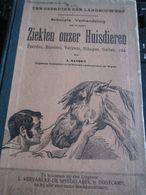 Ziekten Onzer Huisdieren Ten Gebruike Der Landbouwer Paard Rund Varken Schaap Boerderij 1930 Oostkamp Rare Goede Staat - Bücher, Zeitschriften, Comics