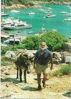 Thèmes > Poste & Facteurs Guy Ceccaldi Facteur De Partinello Corse - Post