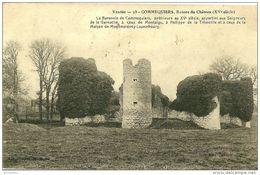 Commequiers. Ruines Du Chateau De Commequiers. - Sonstige Gemeinden