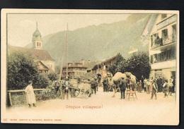 CPA SUISSE  Croquis Villageois ! Présentation D'un Chameau -Edit Comptoir De Phototypie Neuchatel N° 85  - Recto Verso- - Schweiz