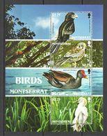 G1072 MONTSERRAT BIRDS OF MONTSERRAT FAUNA #1461-65 MICHEL 1KB MNH - Oiseaux