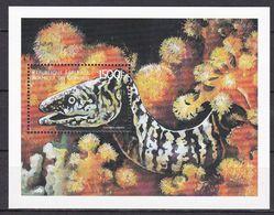 Tr_ Komoren Comores 1999 - Mi.Nr. Block 399 - Postfrisch MNH - Tiere Animals Fische Fishes - Poissons