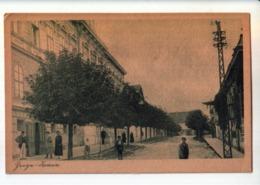 ZEMUN, SEMLIN, STREET SCENE - Serbie