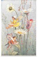 Cpa Illustrateur Margaret W. Tarrant / Elfes Sur Marguerites . - Autres Illustrateurs