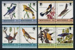Montserrat 1985 / Birds MNH Aves Oiseaux Vögel / Q25  38-23 - Pájaros