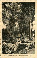 Le Vésinet * Rivière Et Cascade - Le Vésinet