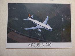 CP GRAND FORMAT  LUFTHANSA   AIRBUS A 310 - 1946-....: Ere Moderne