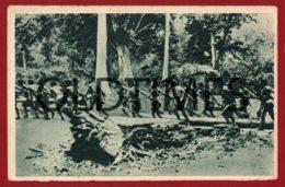 TIMOR - CONDUÇAO DE MADEIRA - VIII SÉRIE - 1940 PC - East Timor