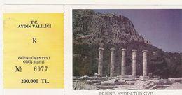 TURQUIE  1998 TICKET ENTREE  PRIENE AYDIN TEMPLE D ATHENA ORENYERI GIRIS BILETI - Tickets D'entrée