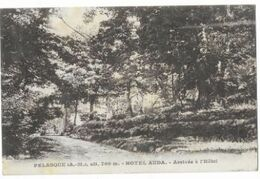 Pelasque - Hôtel Auda - Arrivée à L'hôtel - Gilletta - Circulé En 1929 - - Autres Communes