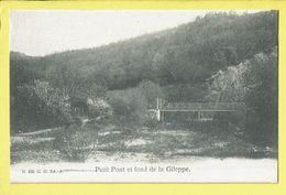 * Gileppe (Liège - Luik - La Wallonie) * (N 606, G.H. Ed. A.) Petit Pont Et Fond De La Gileppe, Bridge, Brug, Canal - Gileppe (Barrage)
