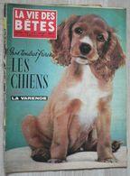 LA VIE DES BETES N°7 (1959) - Les Chiens - Animales