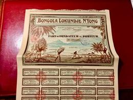 BONGOLA  LOKUNDJE  N4 YONG --------Part  De  Fondateur - Afrika