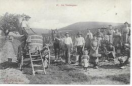 71 - MACON - LES VENDANGEURS - TRES BELLE CARTE ANIMEE 1915 -EDITEUR COLLECTION PRULON A MACON - Vignes